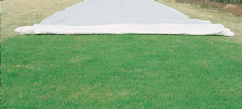 agrofabric-germination-specialty-turf